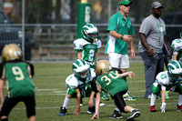 Brick Dragons AYF Action 9-28-14